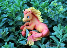 Hippocampus - There is just something about them! by AleciaEdwards