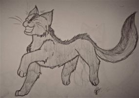 Graystripe by CoilHeart