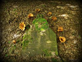 The Tombstone and The Mushrooms by Estruda