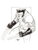 Wolverine High Res Inks by rantz