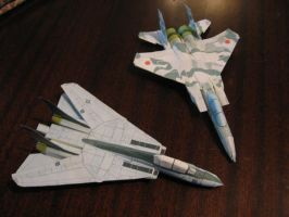 Paper F-14 and F-15 by lincer556