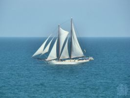 Smooth sailing - for John by Biutz