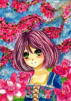 Cherry blossoms by Lovely-Nicole