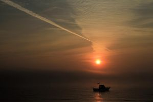 morning by Tiger--photography