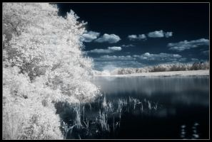 Infrared Lake by dpbBryan
