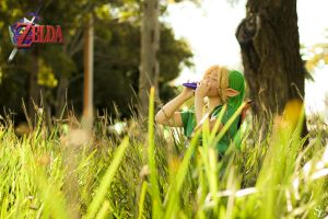 Legend of Zelda: Link in the wild by SteveFattyVuong