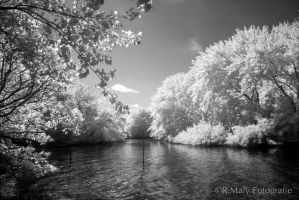 Infrared 1 by TLO-Photography