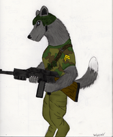 Wolf commando by wolf117M