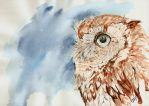 Owl by SajoPhoe