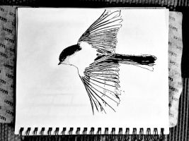 #25 Black-capped Chickadee by AimlessStruggles
