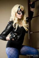 BlackCanary by TheBigTog
