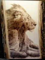 Lion - Wood burning by brandojones