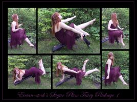 Sugar Plum Fairy Package I by Eirian-stock