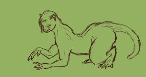 [Comm] Almost Done -Step 3 Ferret TF- by ErnCer