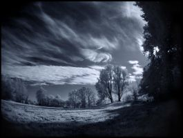 Wonderworld infrared... by MichiLauke