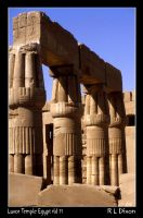 temple of Luxor rld 11 by richardldixon