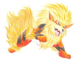 Arcanine by bowseganonlink