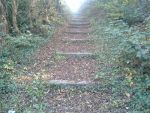 Looking up autumn steps 2 by spookyxf