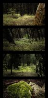 Forest Set by Nemed
