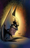 Batman Dark Knight by JeffieB