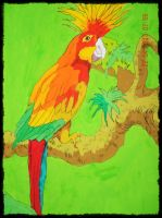 marcow parrot by tong669982