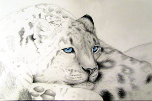 Touched by Frost 2 WIP by Lilia-DeRosso