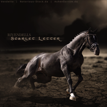 HEE Horse Avatar: Scarlet Letter by VendettaImaging