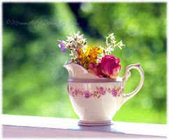 Summer in a Pot by Memmarte