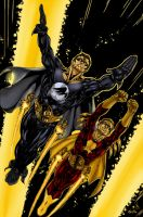 Nightwing and Flamebird by Ronron84