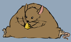 Fat Rat by FancyFerret