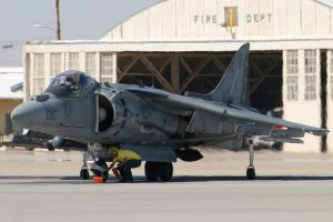 Harrier Chocked by Atmosphotography