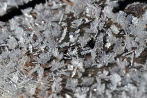 Ice Crystals by Merlinman50