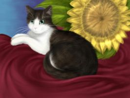 21. Cat with flower by kotlaska93