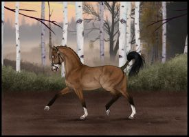 Asconas first Event - Breeder Champion Mare Oct'14 by Tigra1988