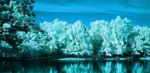Infrared Landscape by GallamorePhotography