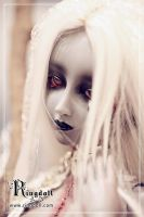 Ringdoll on Dollism plusb8 13 by Ringdoll