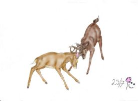 bambi and ronno coloured by HippiUnicorn