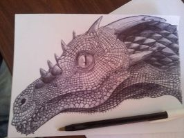 Dragon Head by MadHatterMuscaria