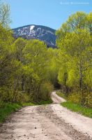 Rocky Mountain Way by Blakannan
