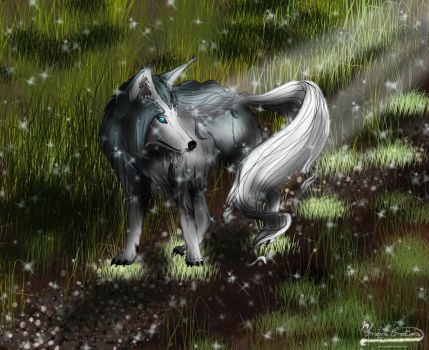 Draw to Adopt Entry: Mystic Wolf by Amabyllis