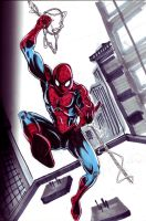 2012 B Day Spidey by hdub7
