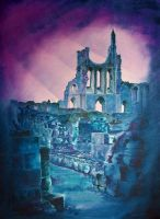 Byland Abbey by michmil