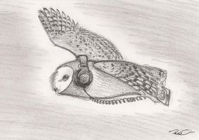 Audiophilus Tyto Alba by RobtheDoodler