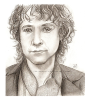 Peregrin Took by lissybeth123