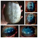 Galaxy Turtle Shell by KonKataCreations