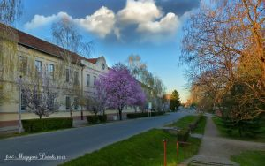 Spring in My City.(Hungary.) HDR-picture. by magyarilaszlo