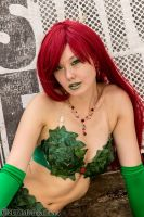 Poison Ivy 17 by Insane-Pencil