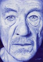 Sir Ian Mckellen (Ballpoint Pen Drawing) by JairMB