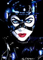 the catwoman batman returns by roydraven777
