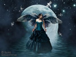 Moon Fairy by adunio